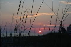 Sunset_seaoats