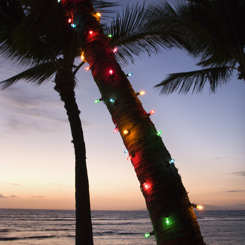 6 Fun Holiday and Christmas Events in Panama City Beach
