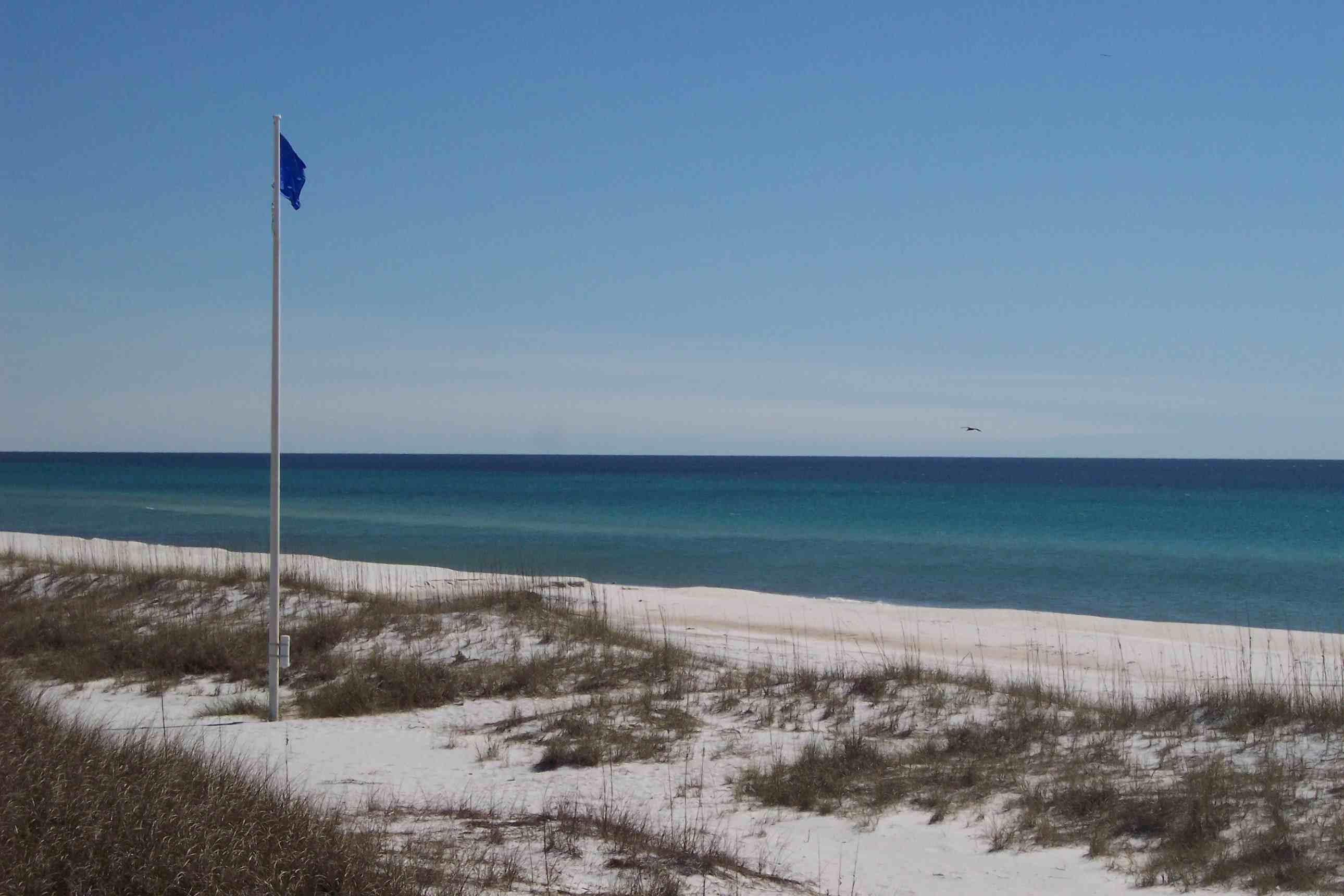 beach_flag1