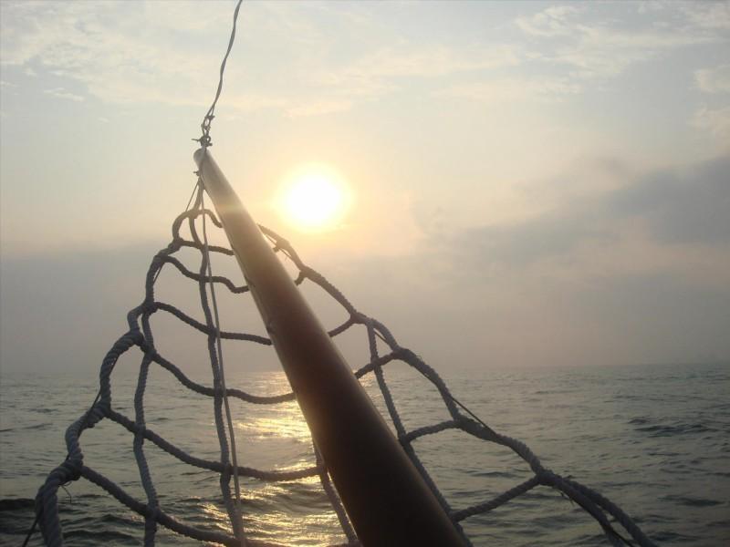 sailnet